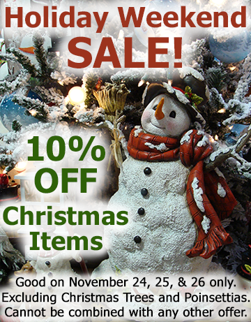 Xmas_Holiday_Sale_10Off_Pic_Text.png
