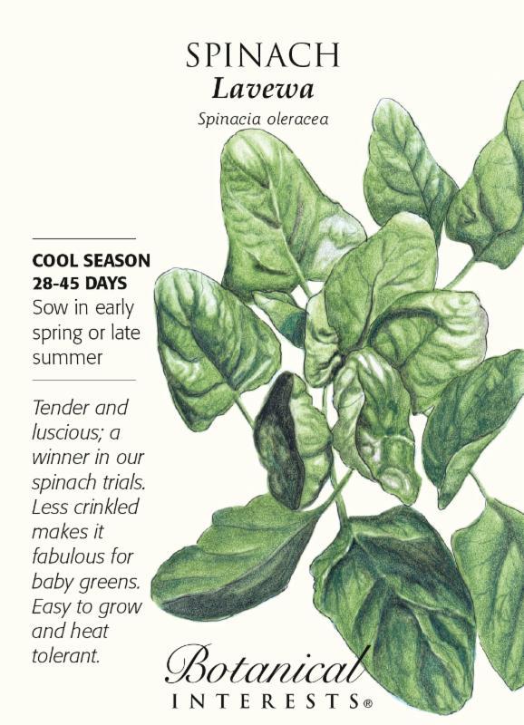 SeedPack-Spinach-LavewaBI.jpg
