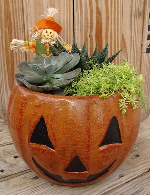 Succulent_Pumpkin_Planter_9-18csw.jpg