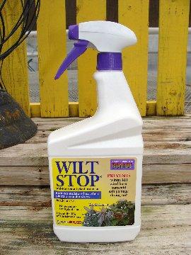 WiltStop10-13sw.jpg