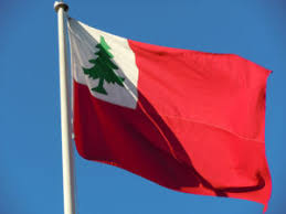 Pine tree flag.jpg