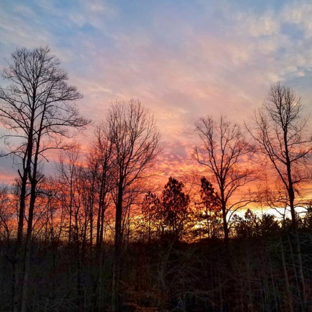 sunset_over_forest.jpg