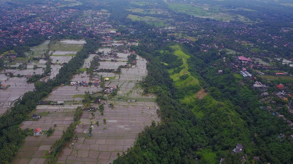 Ubud from the air: home base for a few day's of welcome R & R.