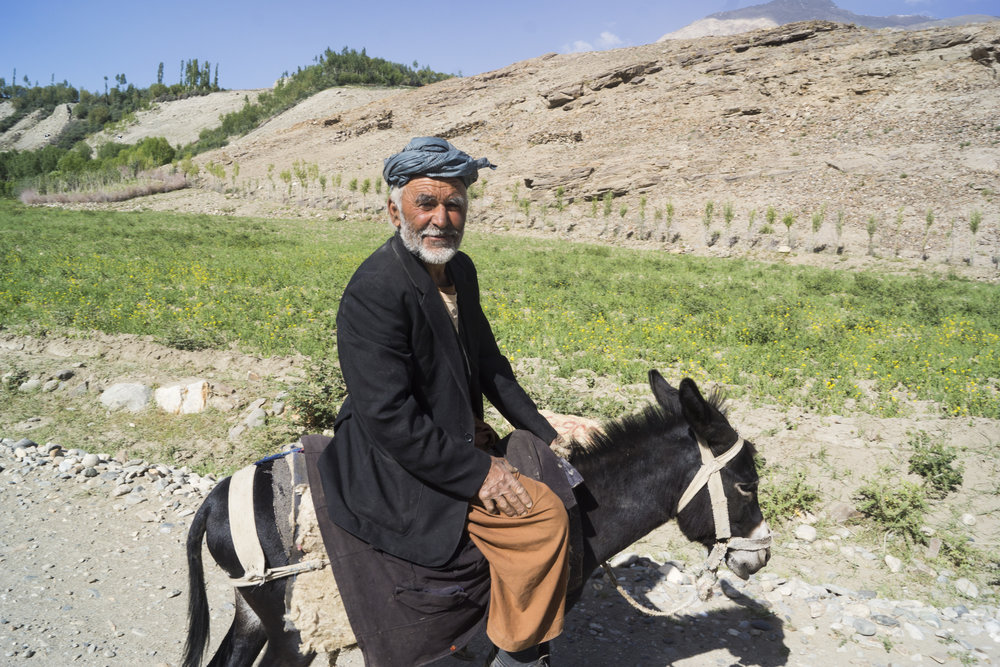 Local Afghan farmer on donkey.