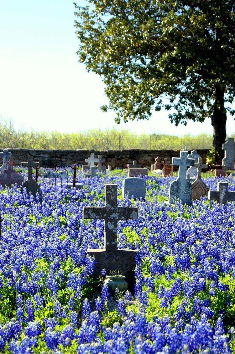 Voor een enkel graf niet te realiseren, maar hoe mooi!
