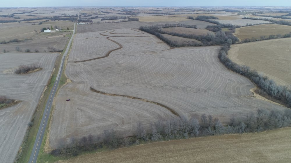 """Looking North at """"East of DD Tract"""" of 67 Farm Acres"""