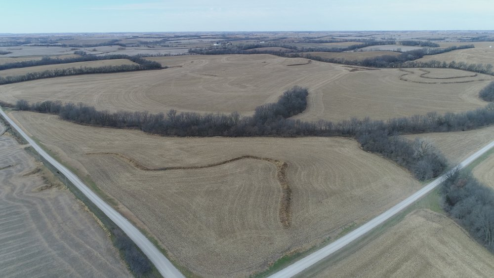 """Looking Northwest at """"Southeast Tract"""" of 200 Farm Acres"""