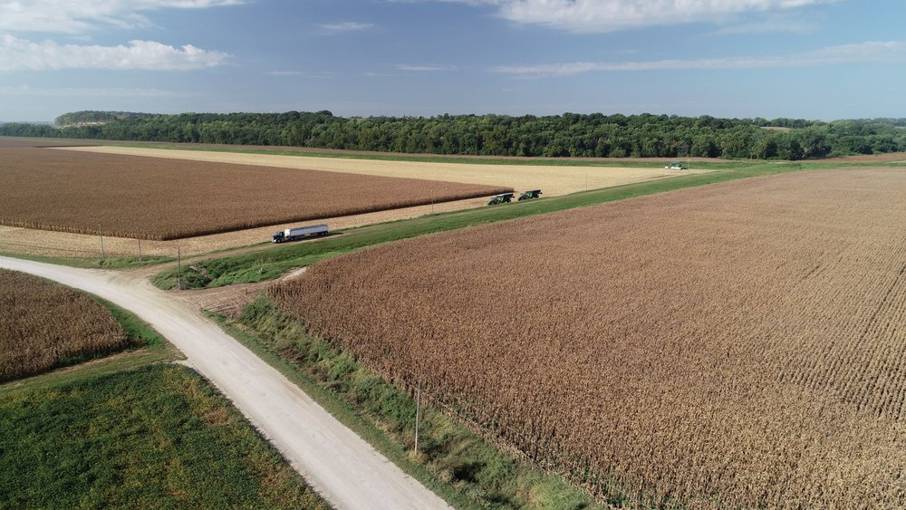 View of South Tract Corn Harvest (September 14, 2018)