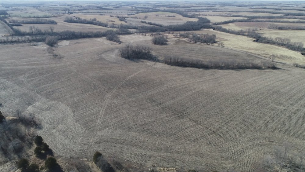 View of West Tract after Corn Harvest (January 9, 2019)