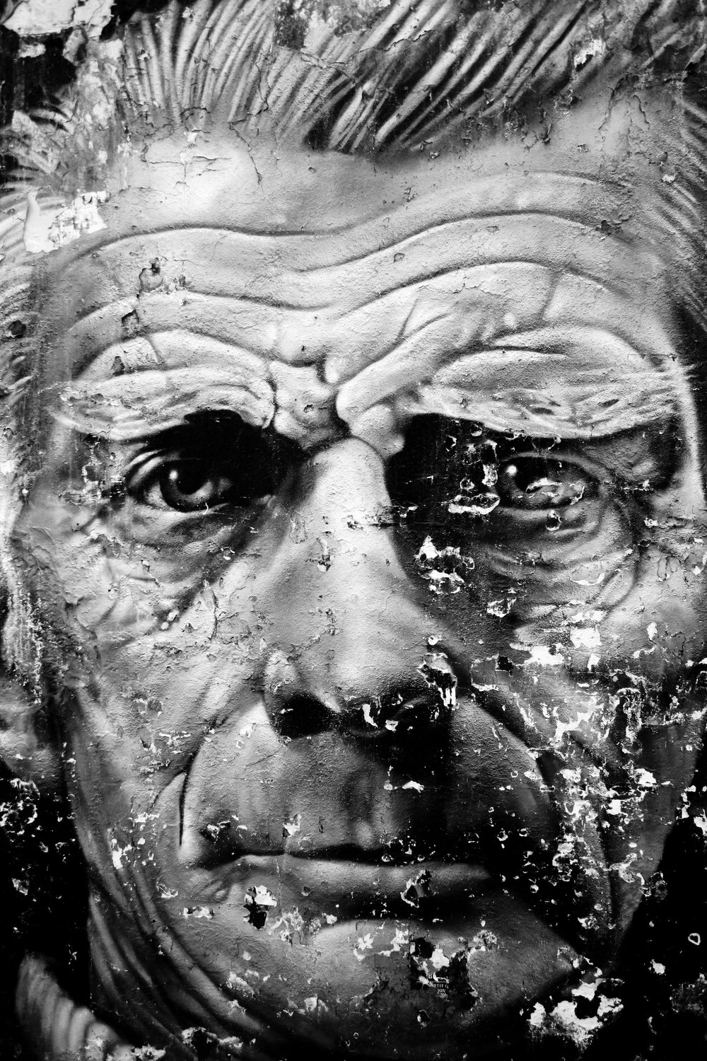 STREET ART OF SAMUEL BECKETT
