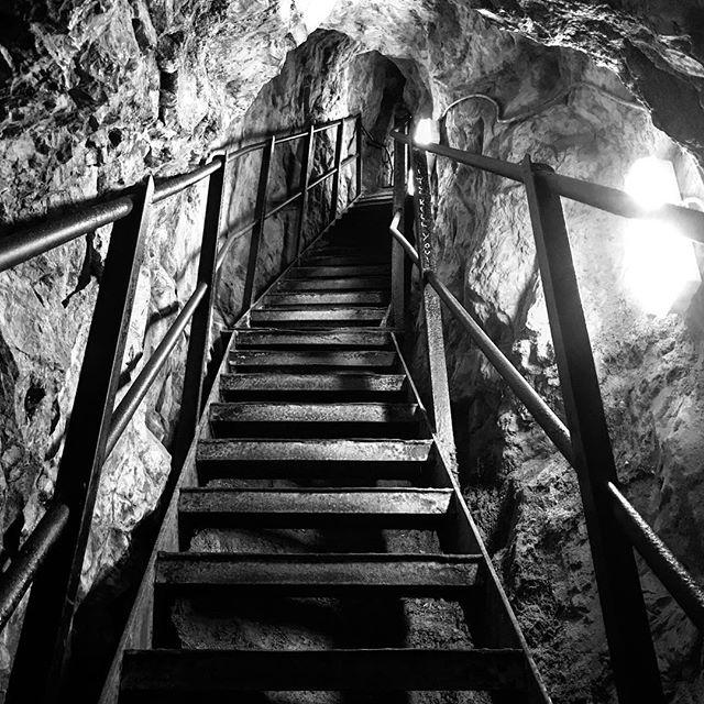 Steps. • • • #monochromephotography #monochrome #lifeinblackandwhite #themonochromerambler #cliftonobservatory #blackandwhitephotography #contrast #130steps