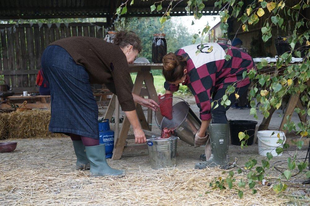 Jane and Eliza straining the dahlia