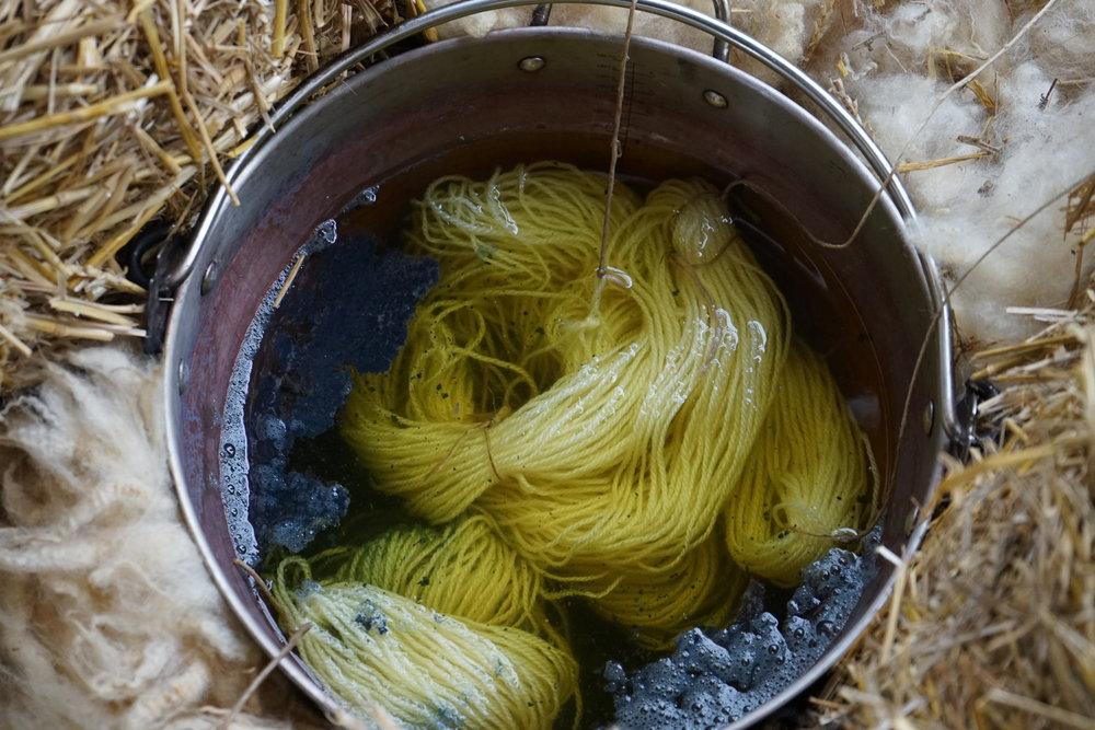 Yarn in a woad vat