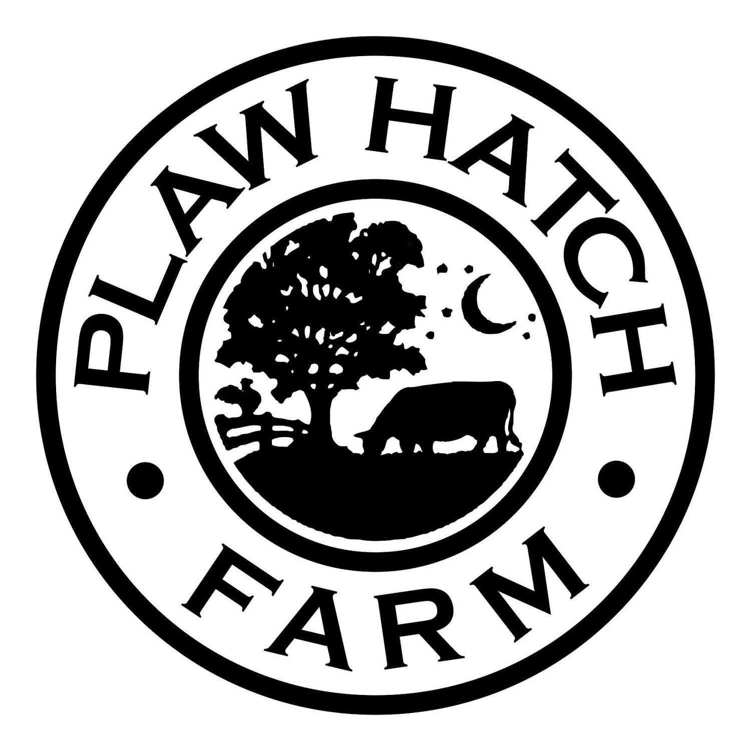 Plaw Hatch Flock