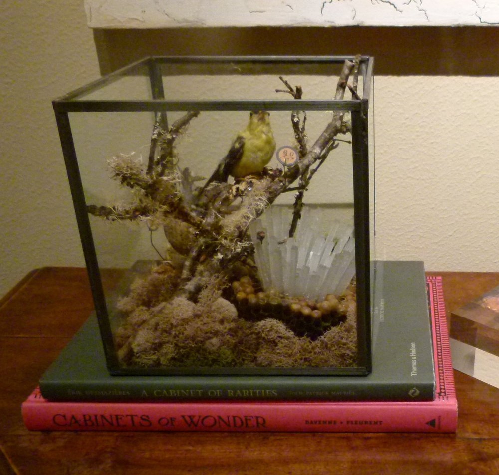 Still Life Diorama with Goldfinches