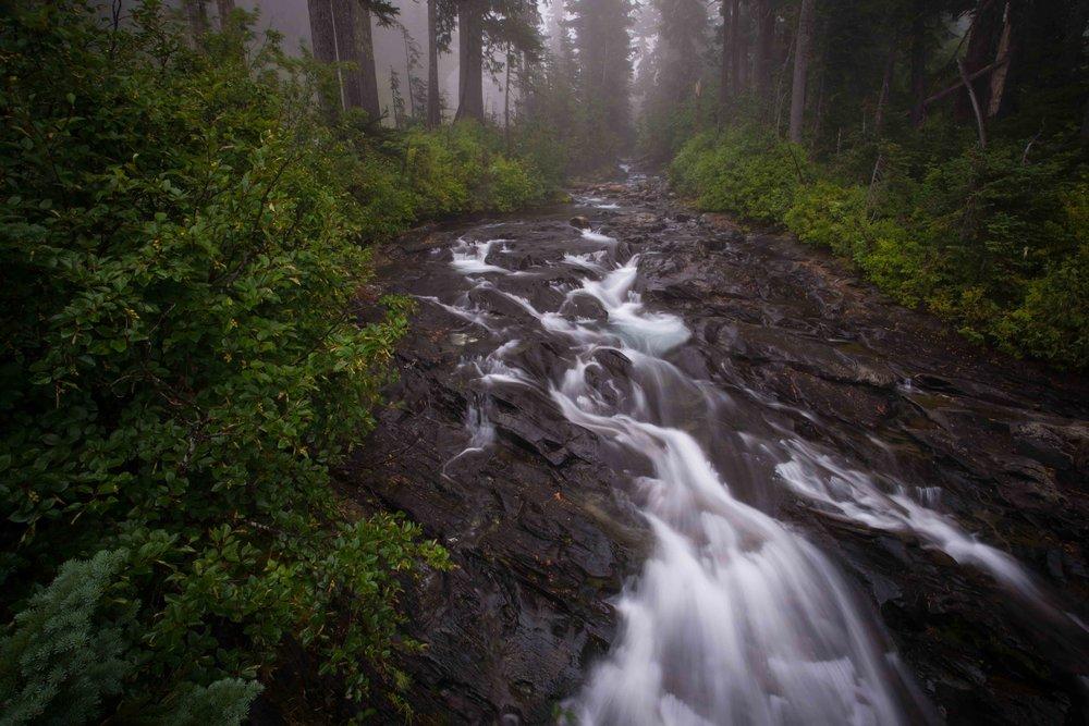 Mt Raineer 1-3.jpg