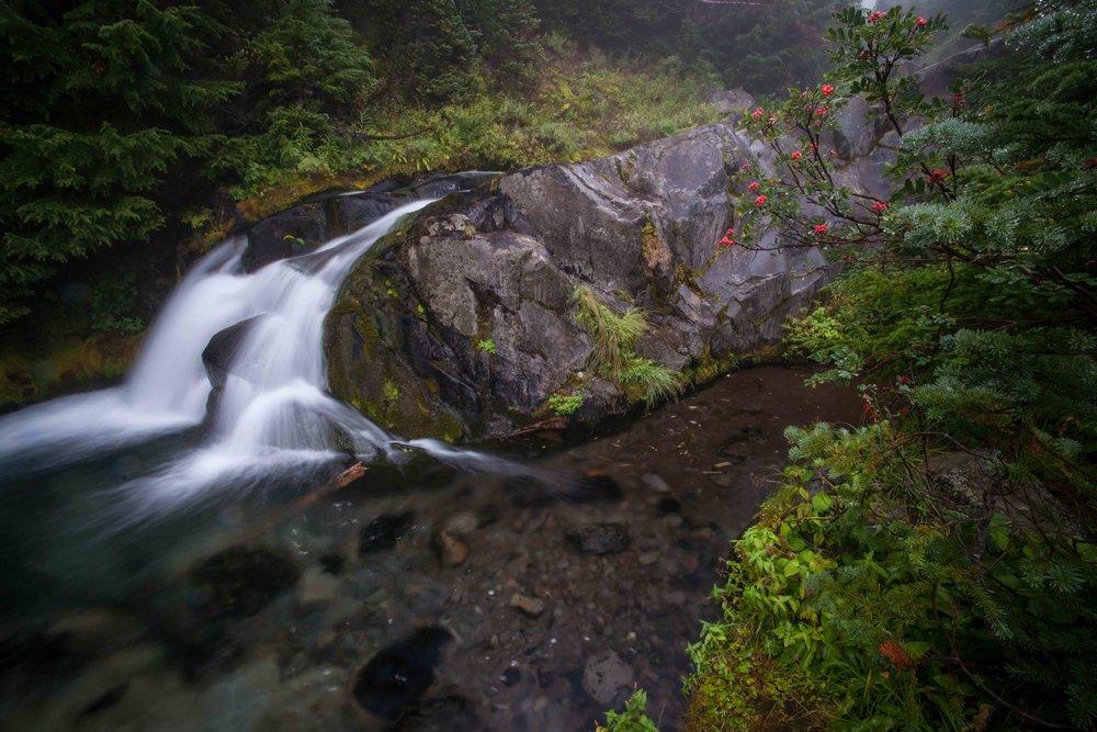 Mt Raineer 1-7.jpg