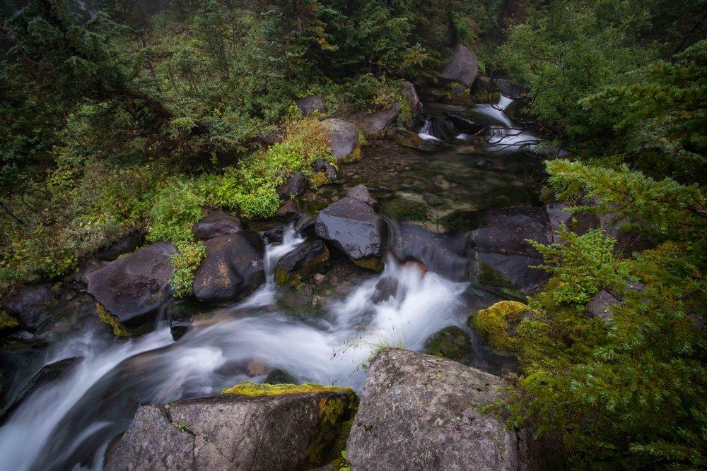 Mt Raineer 1-9.jpg
