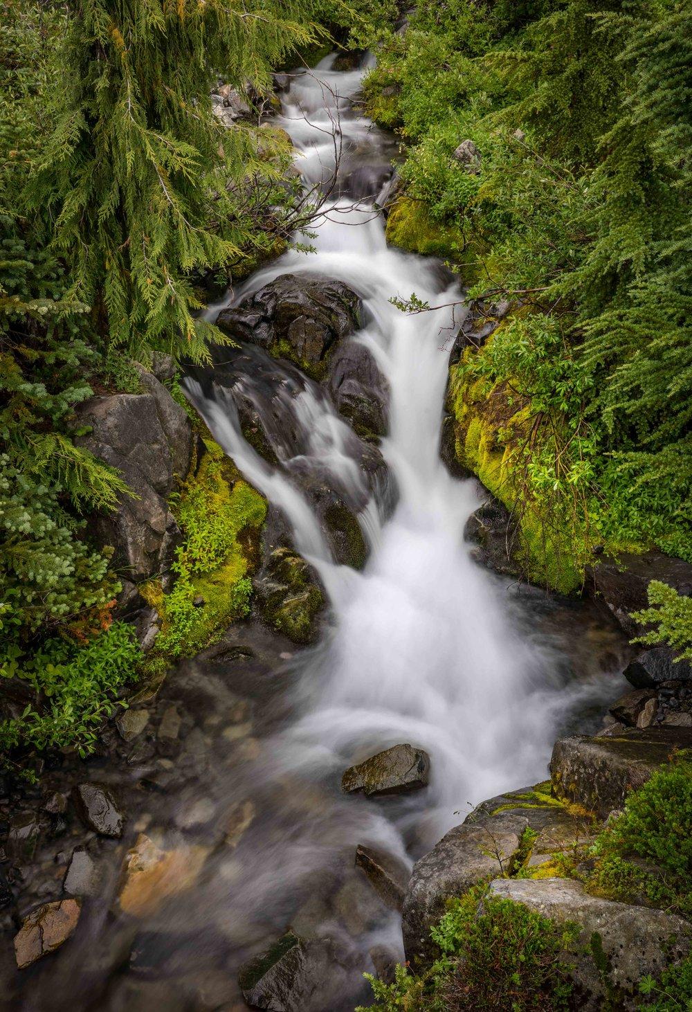 Mt Raineer 20-15.jpg