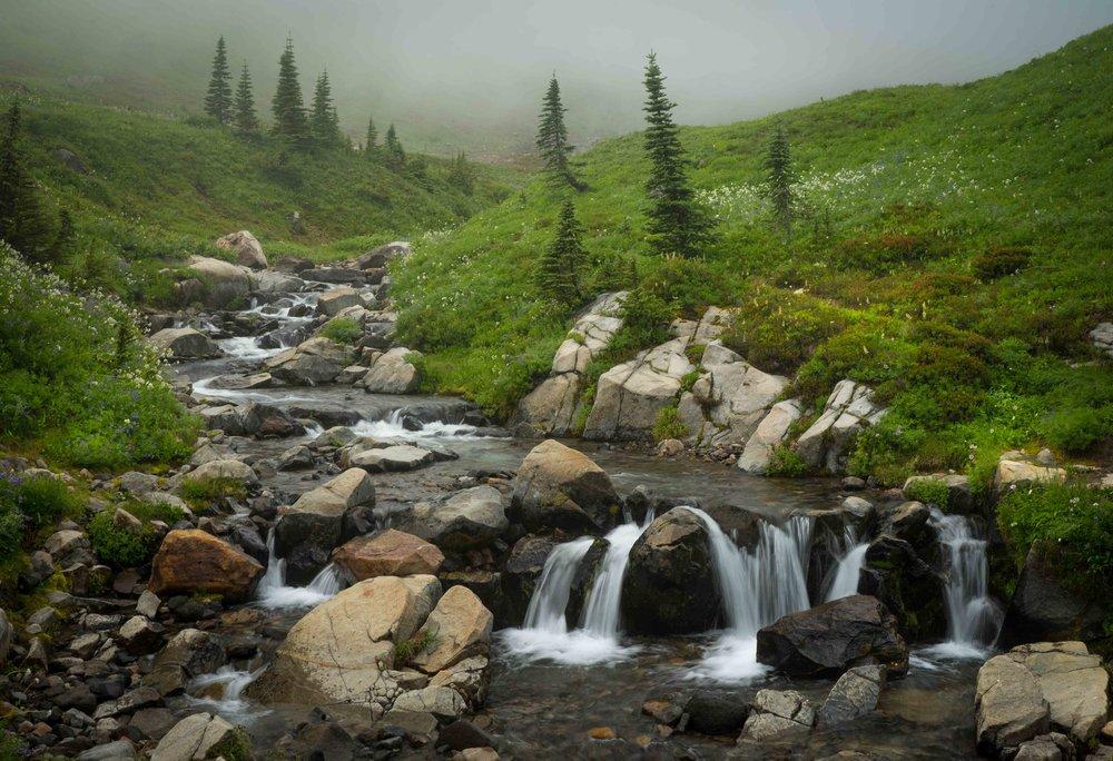 Mt Raineer 20-6.jpg