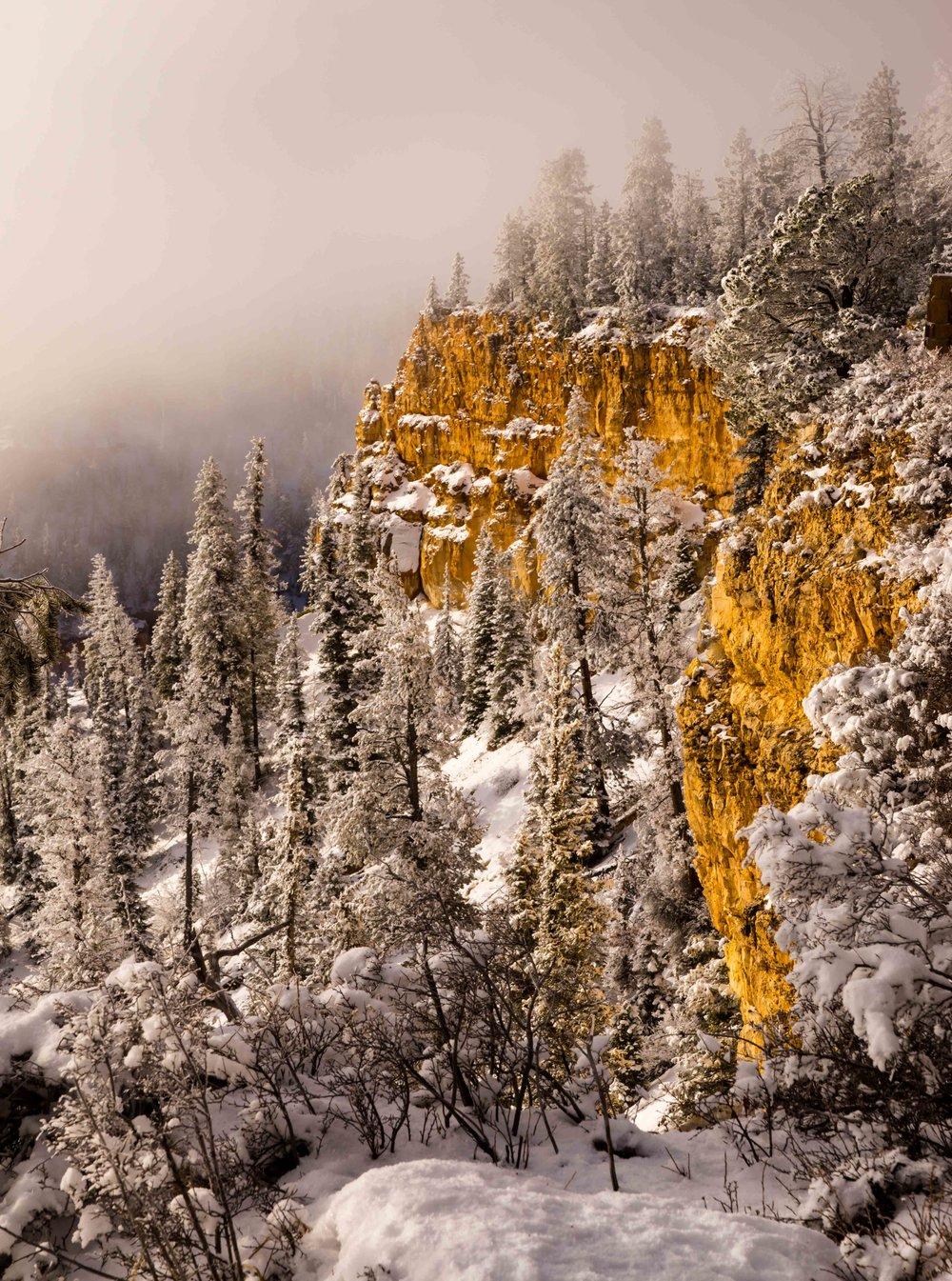 Bryce Canyon_-10.jpg