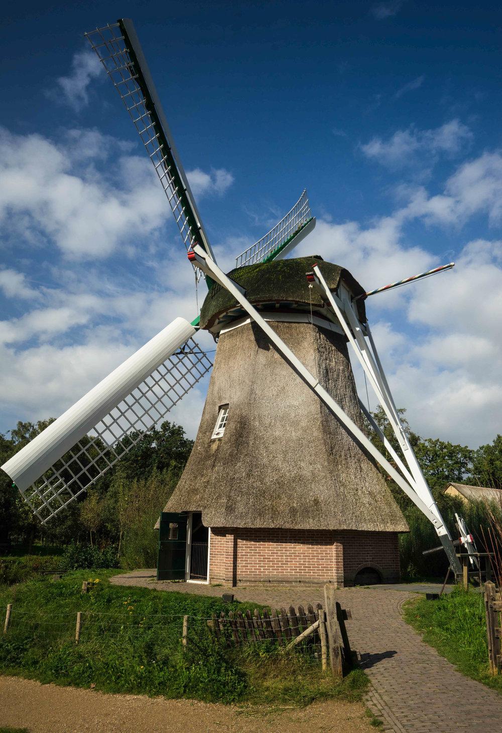 Nederland 10-01-2017 Dev LR-107.jpg