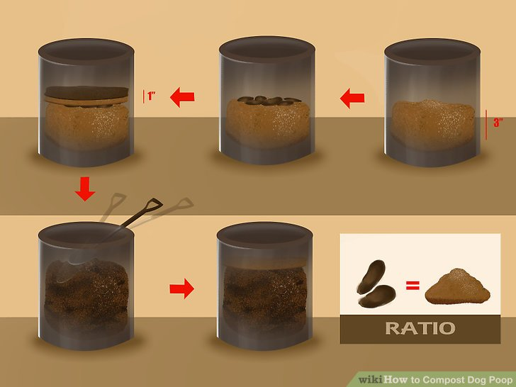 dog-waste-composter-how-to-compost-dog-poop-7-steps-with-pictures-wikihow.jpg