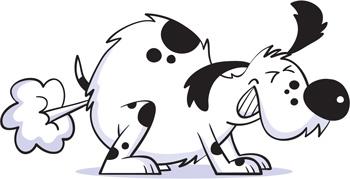 Farting Dog.jpg