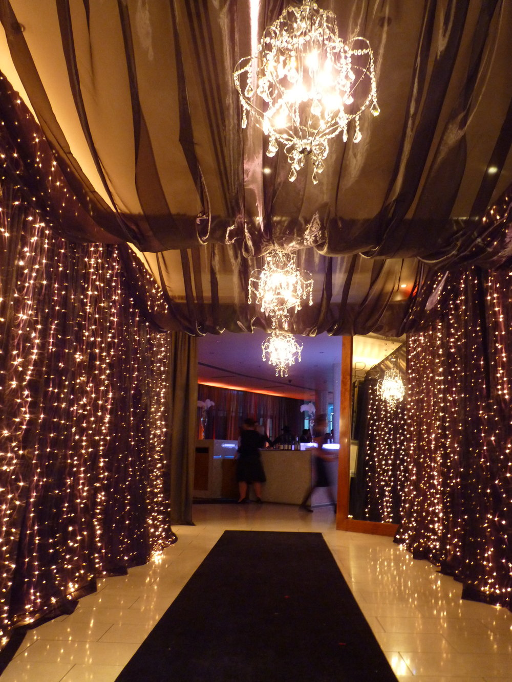 3m curtain lights with black organza