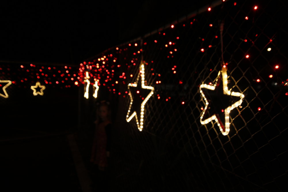 Christmas stars and red fringe lights