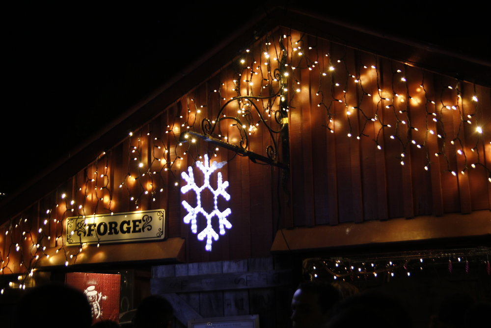 fringe lights and snowflake