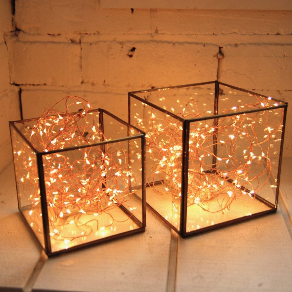 glass box with seed lights