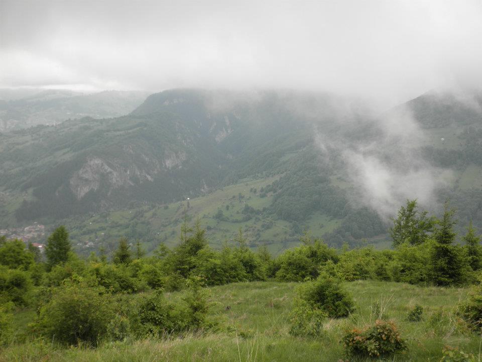 Agriculture, Romania