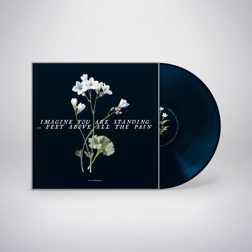 IYASFFAATP Audiobook Vinyl