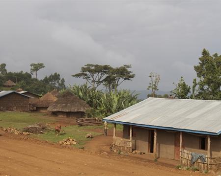 Ethiopia Guji 2.jpg