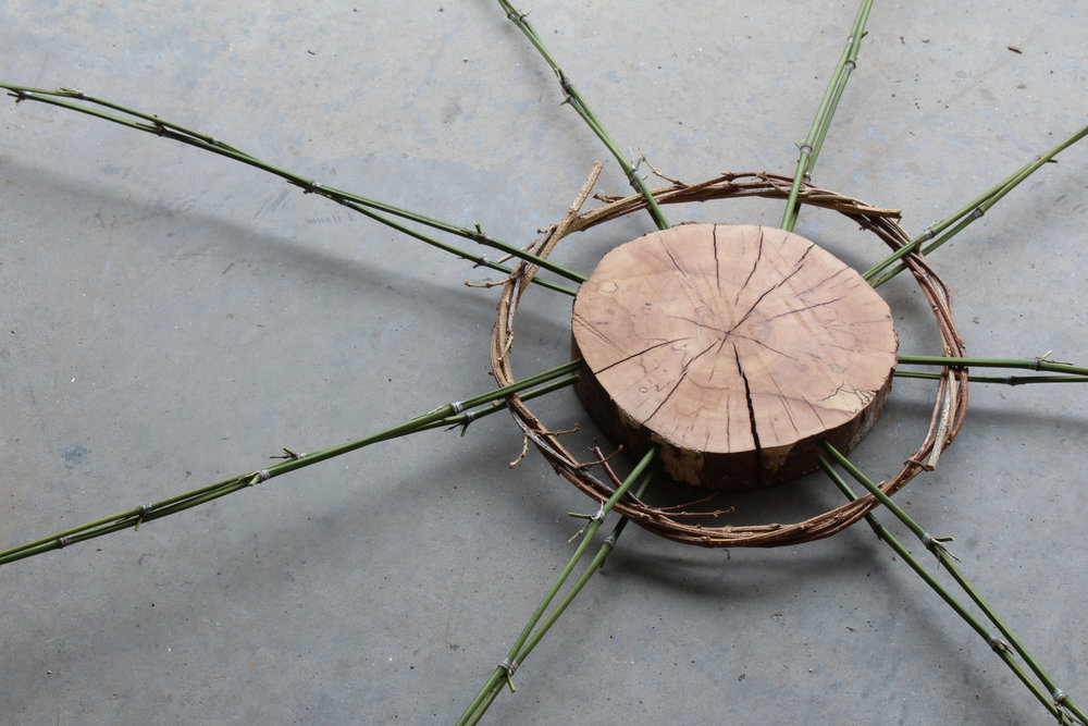 Circle Form #1 Nature Art Photography