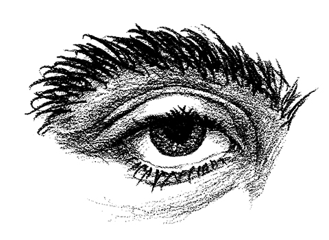 Eye Vector Drawing