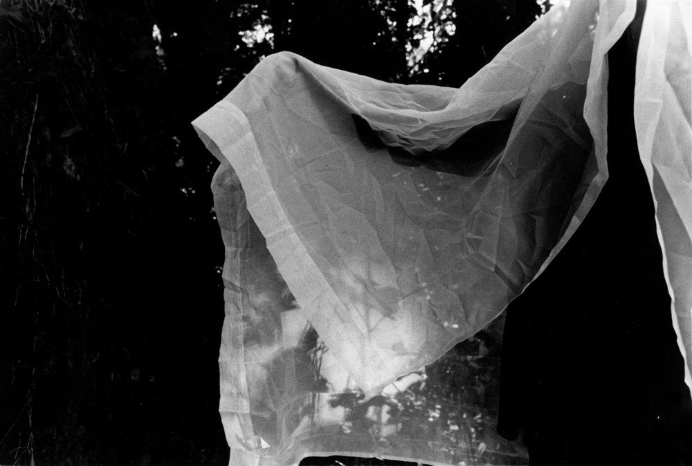 fantasma en el bosque II