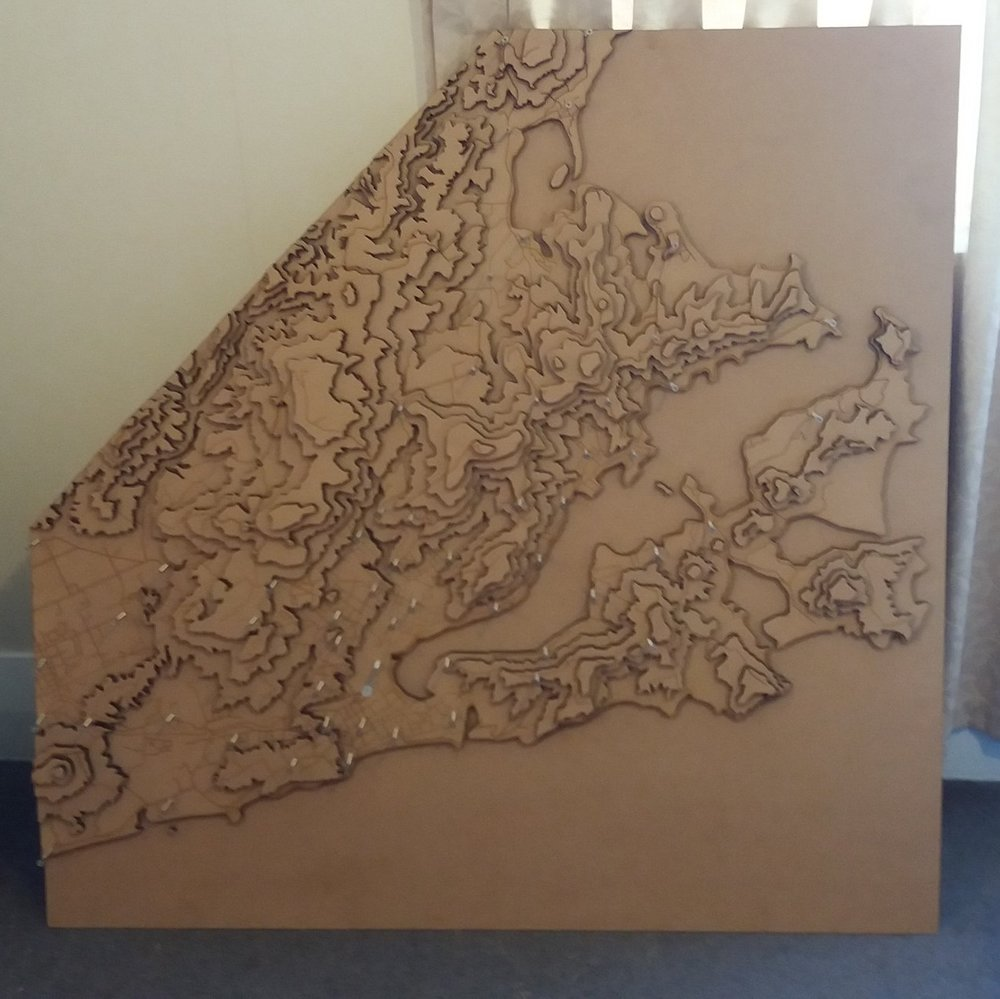 Dunedin map