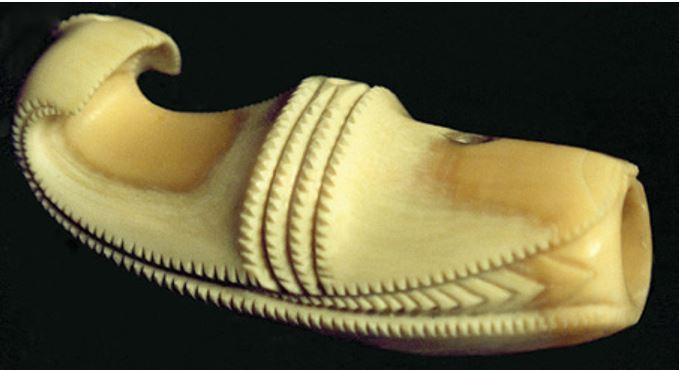 A whale-shaped nguru
