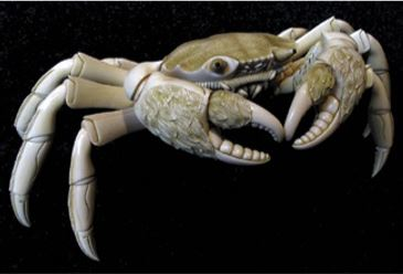 Japanese okimono carving of an articulated crab, c. 1860