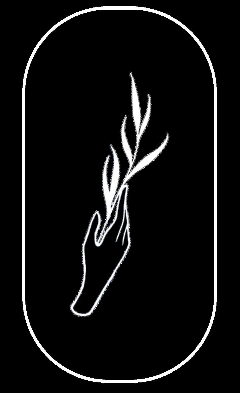 bewilder logo update.png