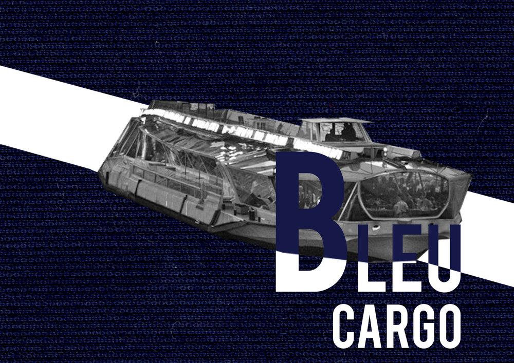 bleu cargo (2).jpg
