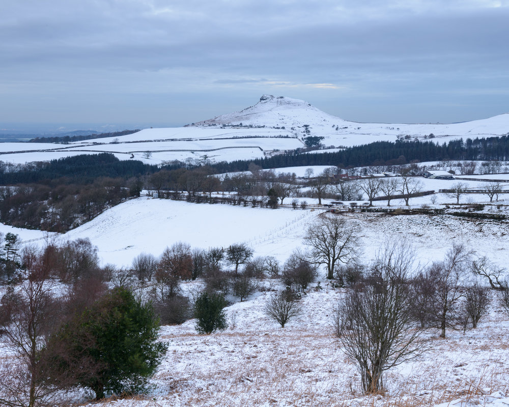 Snowy Fields Leading to Roseberry Topping.jpg