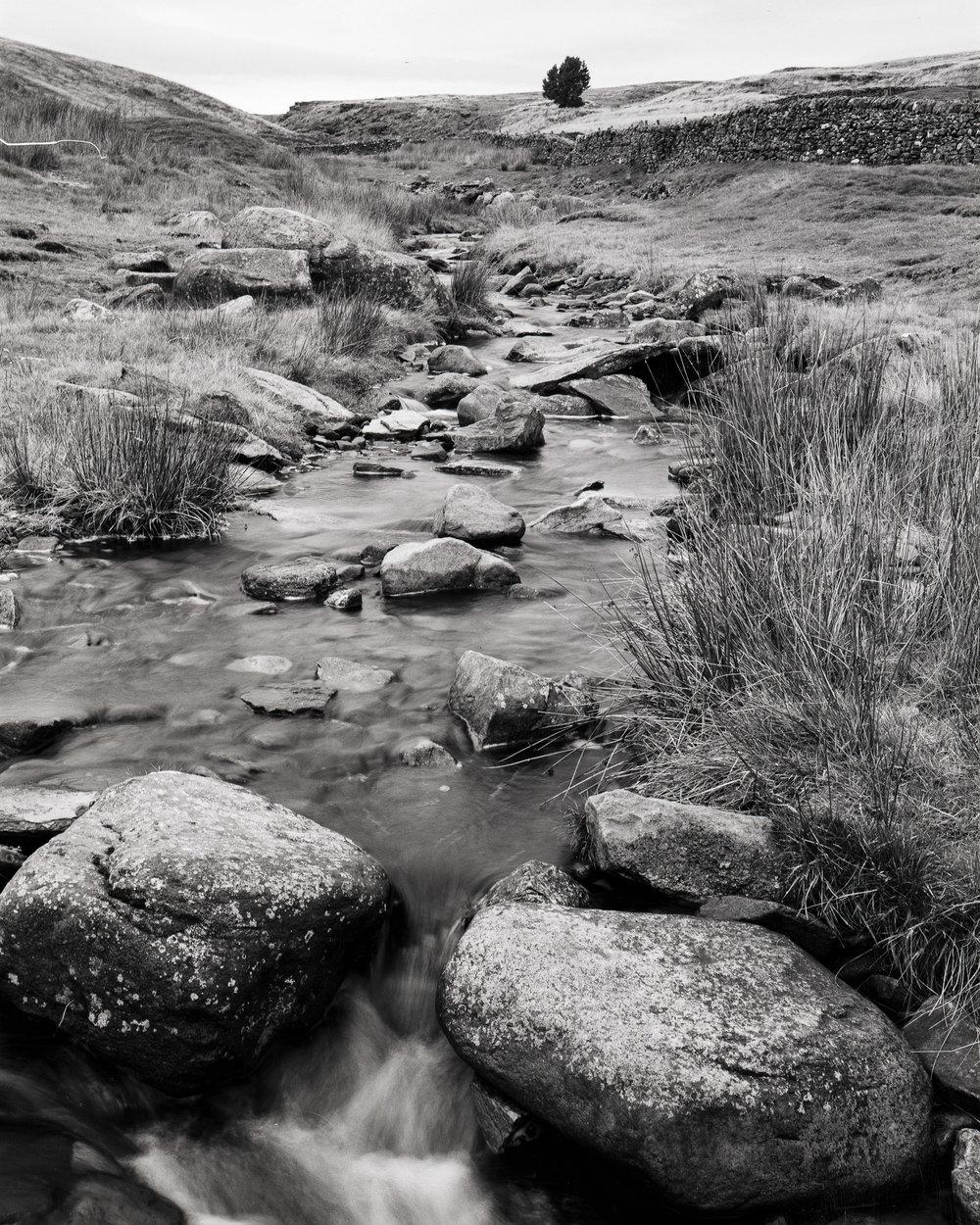 Dales Stream
