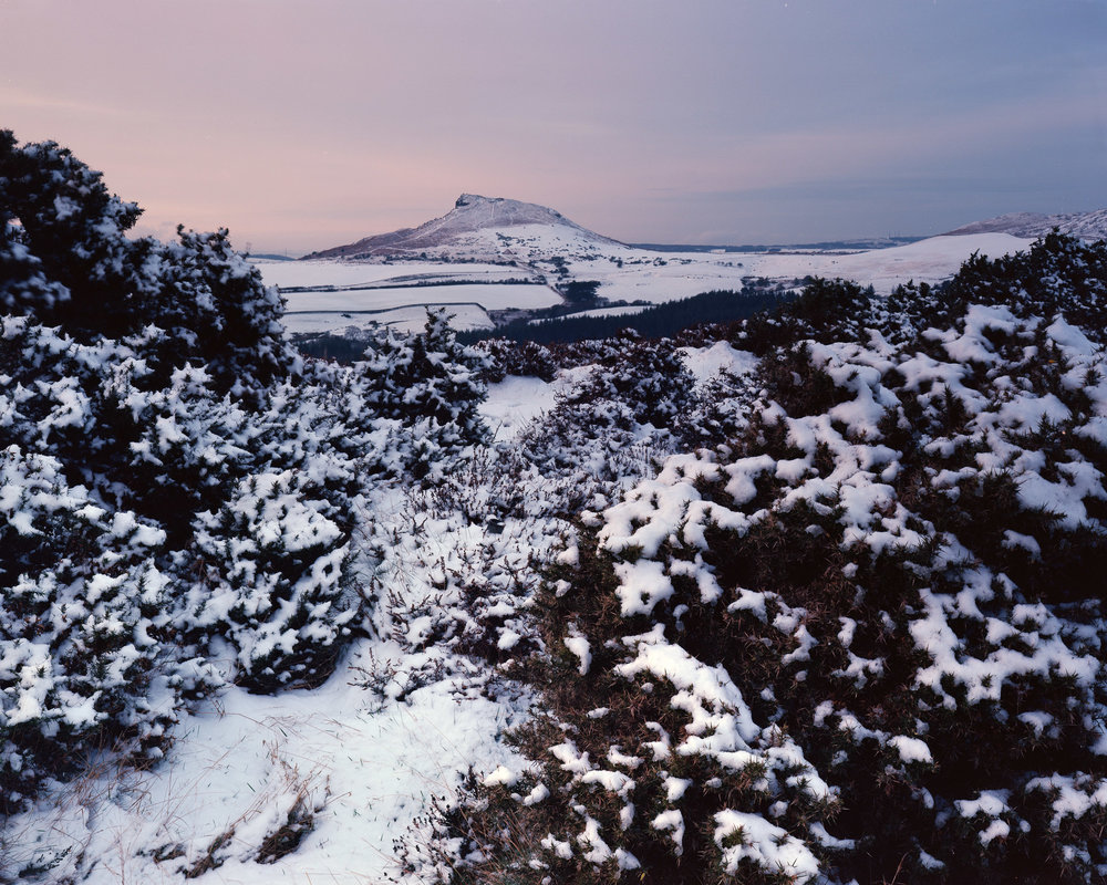 Snow, Gorse, and Roseberry Topping