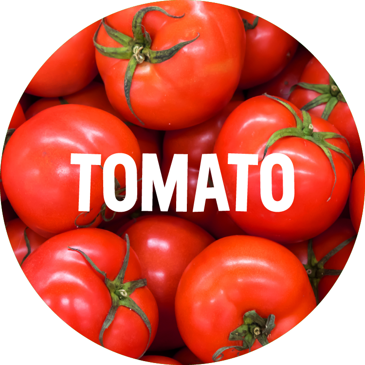 ingredient backgrounds_tomato.png
