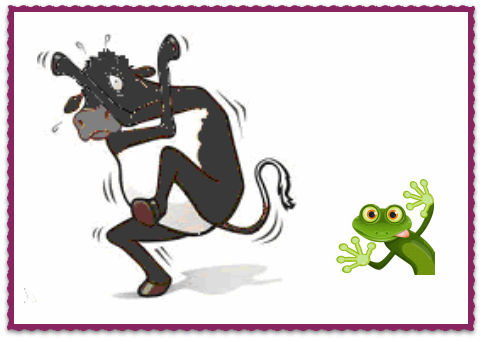 chocolate and frog.png