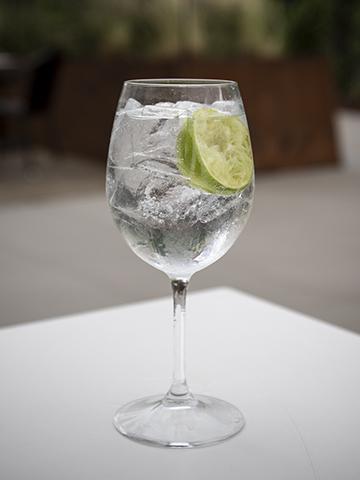 Classic Gin Rickey
