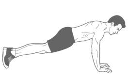 plank from hands.jpeg